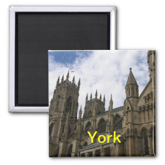 York magnet