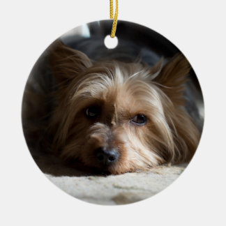 yorkhire / Silky Terrier ornaments