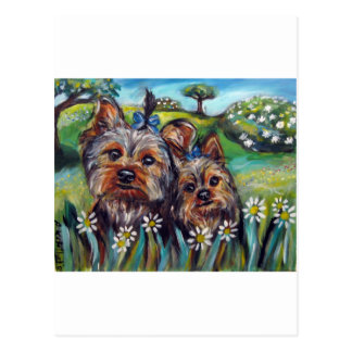 Yorkie best buds Lucy and Milly Postcard