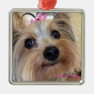Yorkie Christmas Ornament