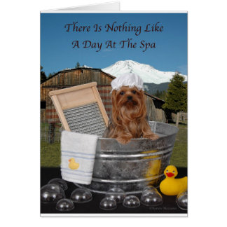 Yorkie Day At Spa Card