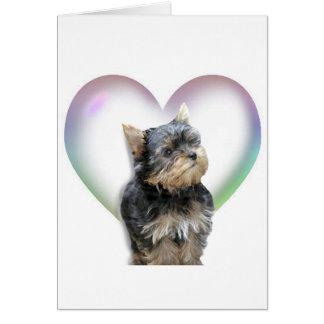 Yorkie Heart Card