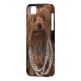 Yorkie in Pearl Necklace iPhone 5 Cover
