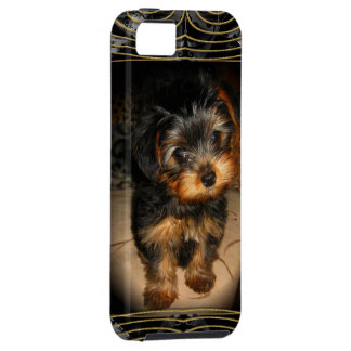 Yorkie Love iPhone 5 Cover