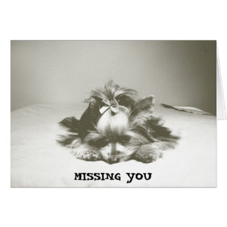 Yorkie Note Card- Missing You Card