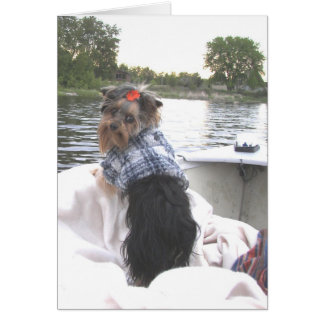 Yorkie Notecard Gone Fishing