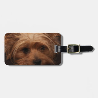 Yorkie or Your Dog Picture Luggage Tags