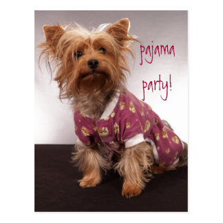 Yorkie Pajama Party Postcard
