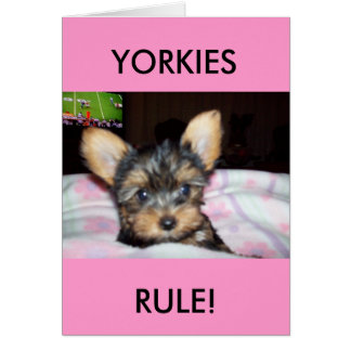 Yorkie Puppy Dog Lover Gifts Card