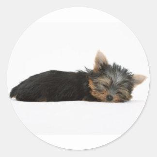 Yorkie Puppy Sleeping Round Sticker