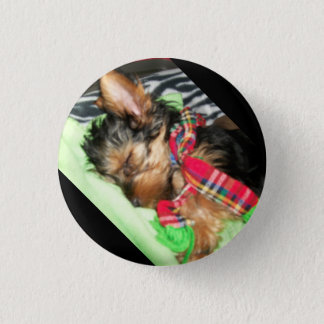 Yorkie Snuggle 1 Inch Round Button