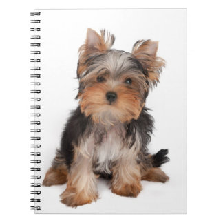 Yorkie Spiral Notebook