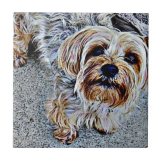 Yorkie Yorkshire Terrier Colored Tile