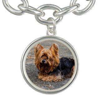 Yorkshire Terrier Bracelets