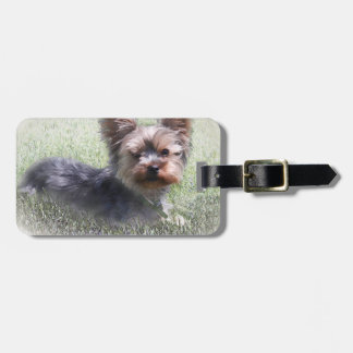 Yorkshire Terrier Buddy multiple products selected Luggage Tag