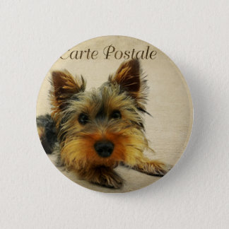 Yorkshire Terrier Dog 2 Inch Round Button