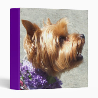 Yorkshire Terrier dog Binders