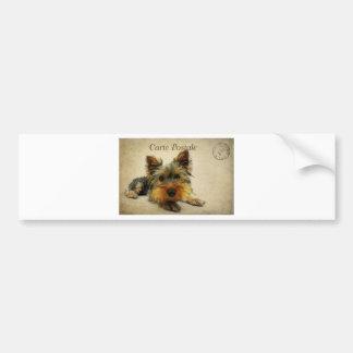 Yorkshire Terrier Dog Bumper Sticker