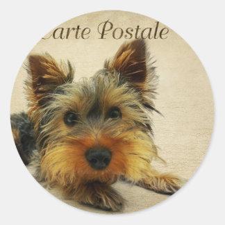 Yorkshire Terrier Dog Classic Round Sticker