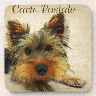 Yorkshire Terrier Dog Coaster