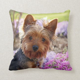 Yorkshire Terrier dog cute photo cushion pillow