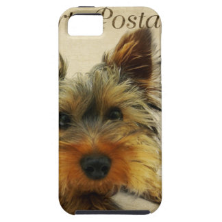 Yorkshire Terrier Dog iPhone 5 Cases