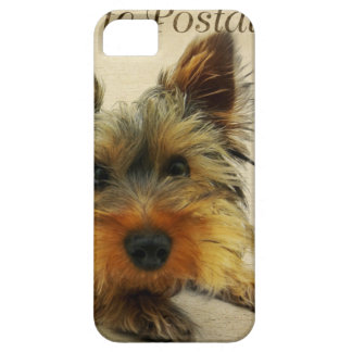 Yorkshire Terrier Dog iPhone 5 Covers