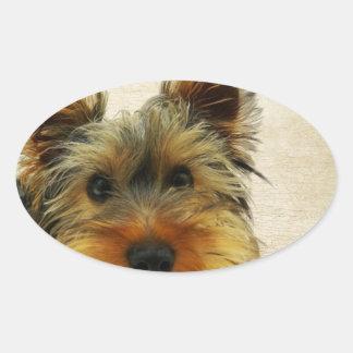 Yorkshire Terrier Dog Oval Sticker