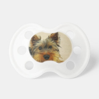 Yorkshire Terrier Dog Pacifier