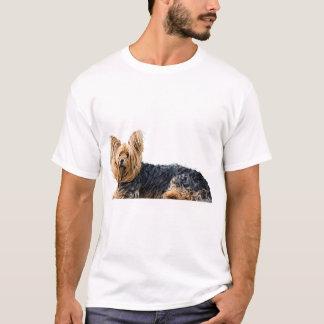 Yorkshire Terrier Dog Picture Men's T-shirt