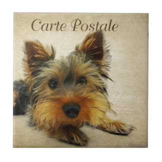 Yorkshire Terrier Dog Tile