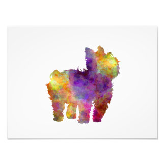 Yorkshire Terrier in watercolor 2 Photo Print