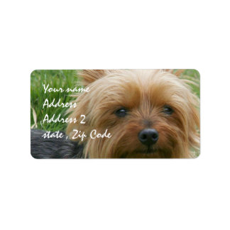 Yorkshire Terrier Label
