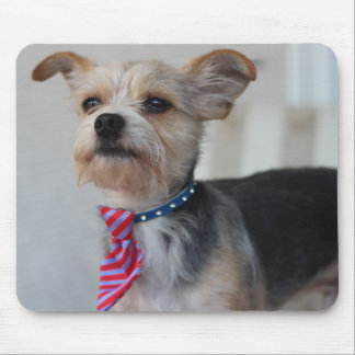 Yorkshire Terrier Mix Shelter Rescue Dog Mousepad