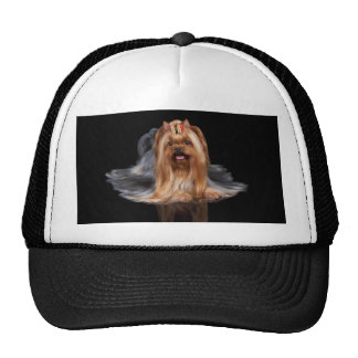 Yorkshire Terrier on black Trucker Hat