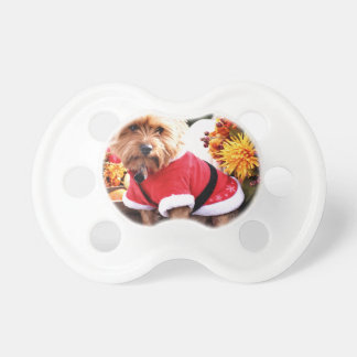 Yorkshire Terrier Pacifier