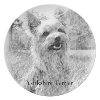 Yorkshire Terrier Pencil Drawing Party Plate