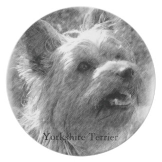 Yorkshire Terrier Pencil Drawing Party Plates