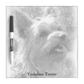 Yorkshire Terrier Pencil Drawing Square Dry Erase Whiteboards