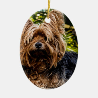 Yorkshire Terrier Pet Dog Ceramic Ornament