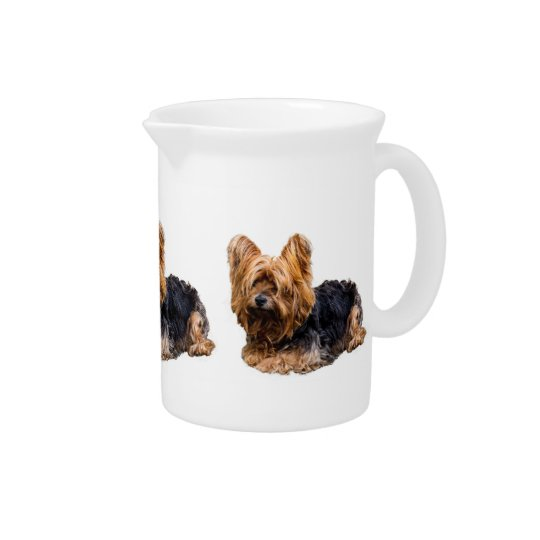 Yorkshire Terrier Pitcher