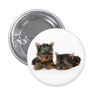 Yorkshire Terrier Puppies Button