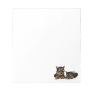 Yorkshire Terrier Puppies Notepad