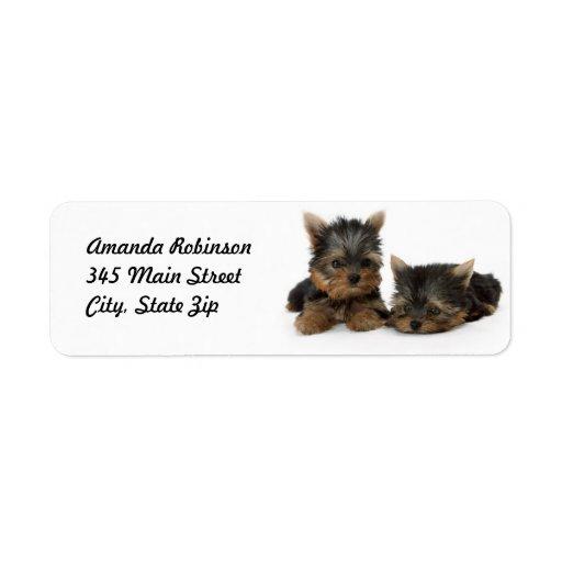 Yorkshire Terrier Puppies Return Address Label