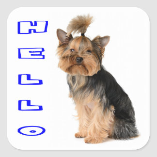Yorkshire Terrier Puppy Dog Blue Hello Square Sticker