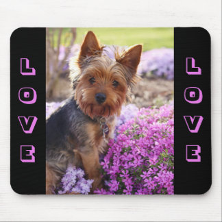 Yorkshire Terrier Puppy Dog Love  Mousepad