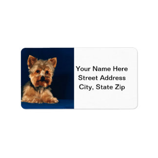 Yorkshire Terrier Puppy Label