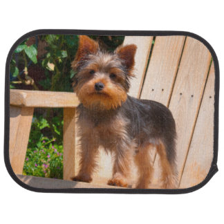 Yorkshire Terrier standing on wooden chair Car Mat