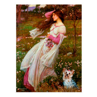 Yorkshire Terrier (T) - Windflowers Postcard