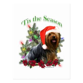 Yorkshire Terrier 'Tis Postcard